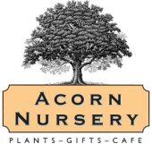Acorn nursery logo