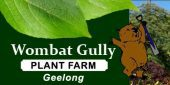 Seasol products available at Wombat Gully Plant Farm