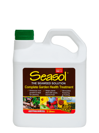 Seasol 2 lt conc product information