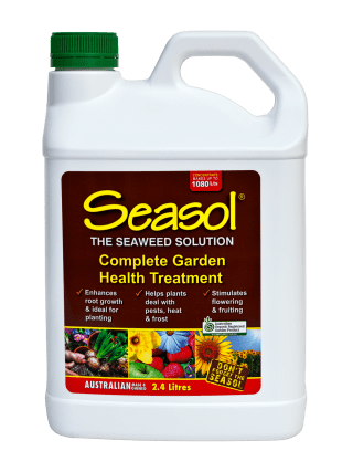 Seasol 2.4 lt conc product information
