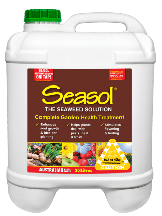 Seasol 20 lt conc product information