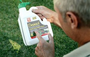 How to give your plants a boost with Seasol and PowerFeed