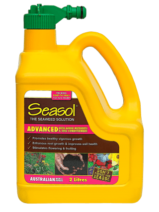 Seasol Advanced 2 Lt hose-on product information