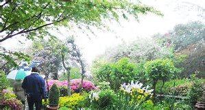 Garden Thumbnail