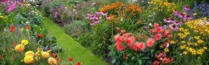 Flower Garden with Pathway