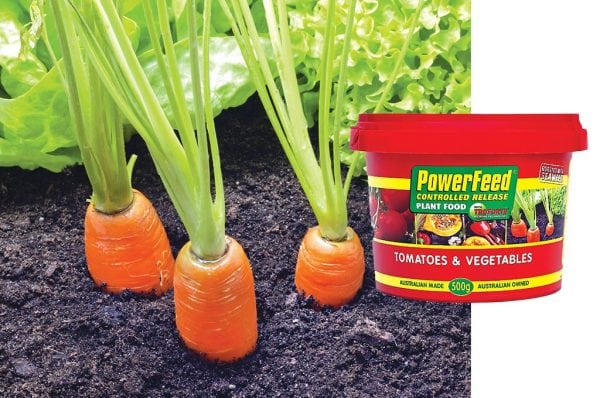 Red Seasol Powerfeed Controlled Release Plant Food for Tomatoes and Vegetables with Troforte
