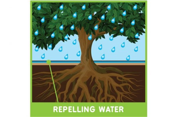 Hydrophobic Soil Repelling Water