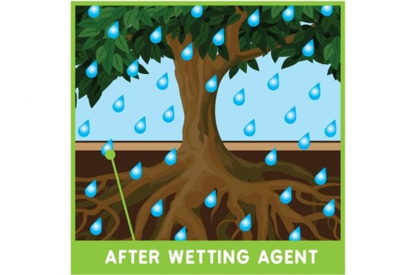 Water Absorption After Wetting Agent Application