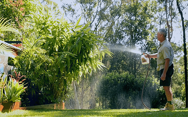 Benefit of Seasol on garden and lawn