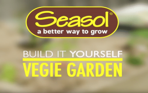 How to build a vegie garden with Seasol
