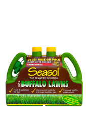 Seasol for Buffalo Lawns