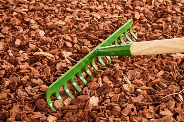 How to apply mulch to your garden