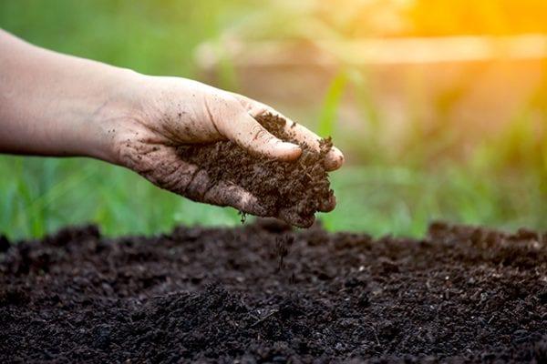 Improving soil over winter Seasol Liquid Compost