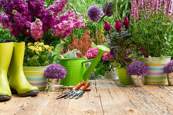 Spring gardening care tips with PowerFeed