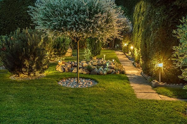 Garden light to highlight garden plants