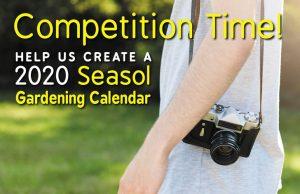 Seasol Calendar Comp Nov 2019
