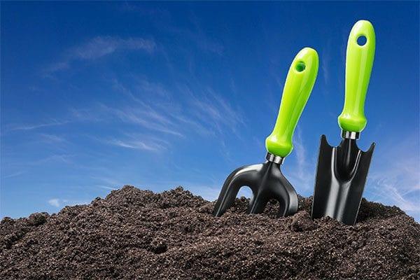 soil TLC tips in summer
