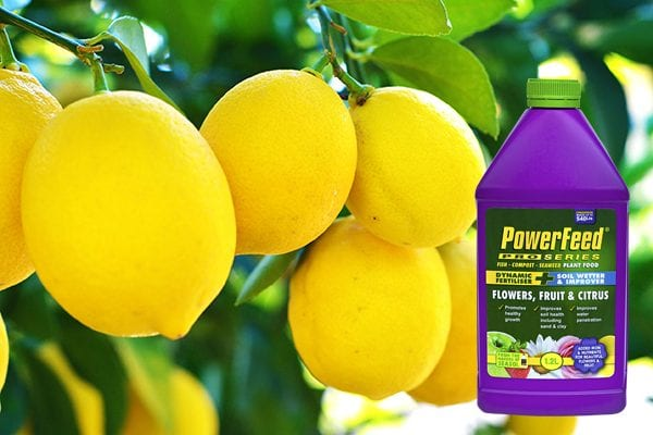 Fertilising lemons with PowerFeed