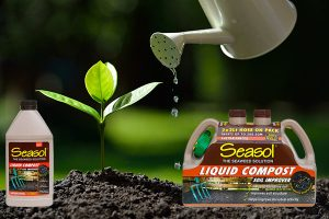Ensure water stays within your soil this summer banner