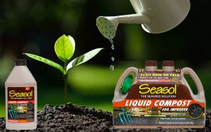 Ensure water stays within your soil this summer with Seasol Liquid Compost