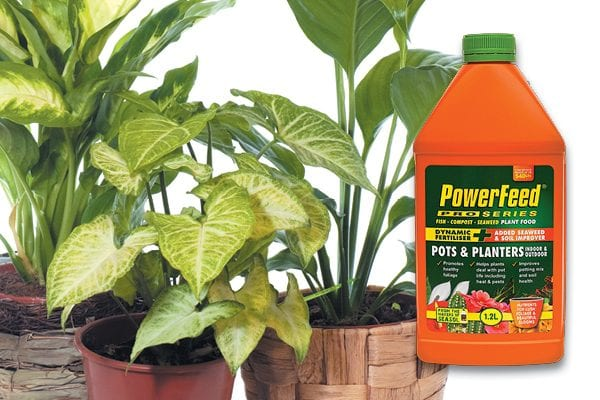 For stress free pot life with PowerFeed PRO SERIES Pots & Planter