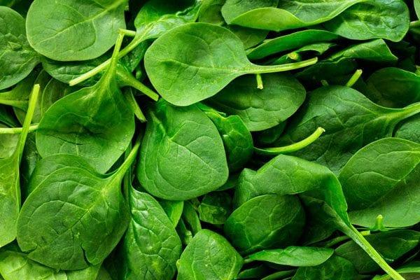 Growing fast leafy crops