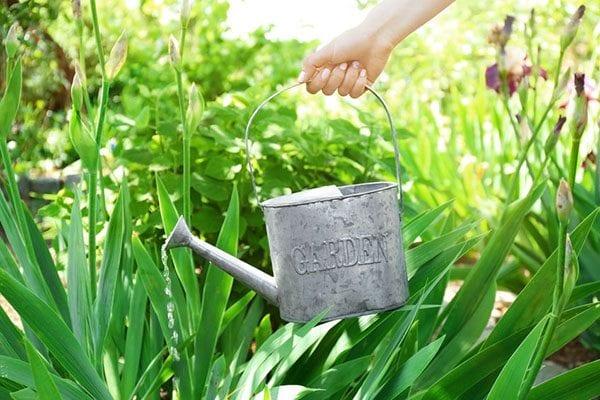 What is liquid fertiliser?