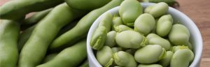 How to grow vegetables - broad beans
