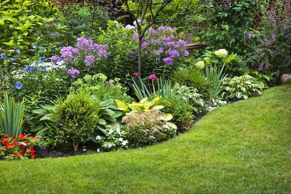 How to design a garden
