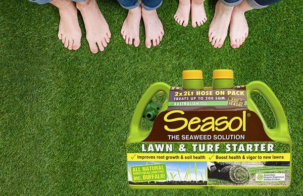 Late winter lawn care for a lush green lawns.