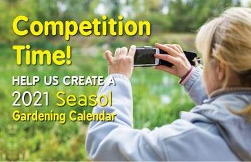 2021 Seasol Gardening Calendar August Image