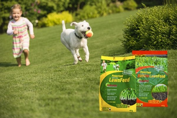 Seasol's Guide to Understanding Lawn Fertilisers