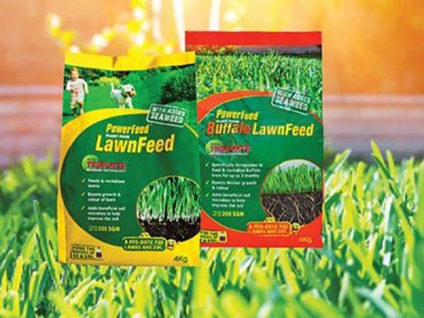Seasol's Guide to Understanding Dynamic Lawn Fertilisers