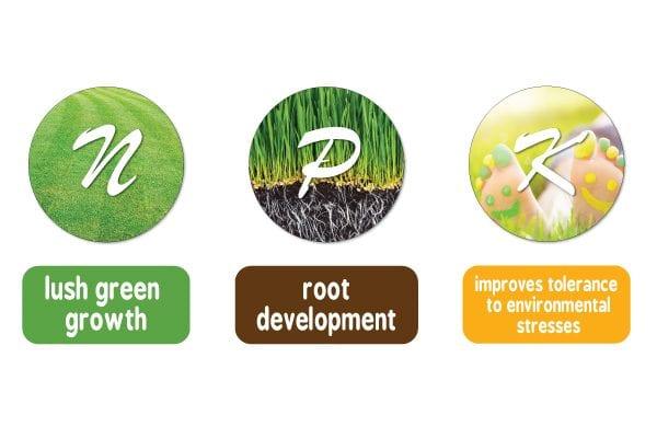 Handy Hint Seasol's Guide to Understanding Lawn Fertilisers