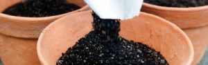 Put Life into Potting Mix with Seasol Potting Mix Booster - Handy Hint Banner