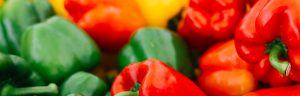 Seven handy tips on how to grow tasty delicious capsicums How to grow vegetables -capsicums Handy Hints