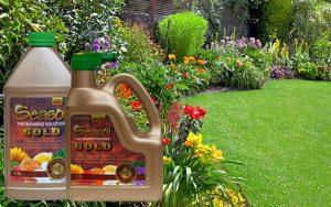 Seasol TV How to get an award winning garden naturally with Seasol GOLD