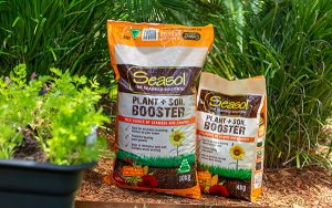 Seasol TV How to look after your garden all year round naturally with Seasol Plant + Soil Booster